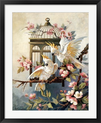Framed Cockatoo and Blossoms Print