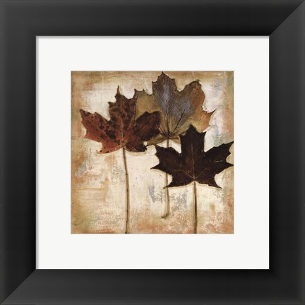 Framed Natural Leaves III Print