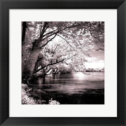 Framed Spring On The River Square I - mini Print