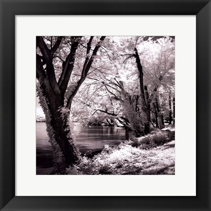 Framed Spring On The River Square II - mini Print