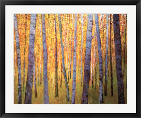 Framed Forest Verticals Print