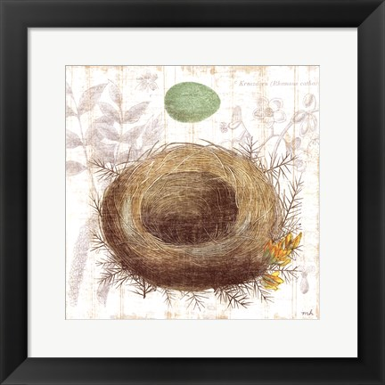 Framed Botanical Nest II Print