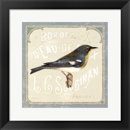Framed Pariasian Bird I Print