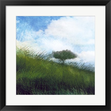 Framed Bright Field IV Print