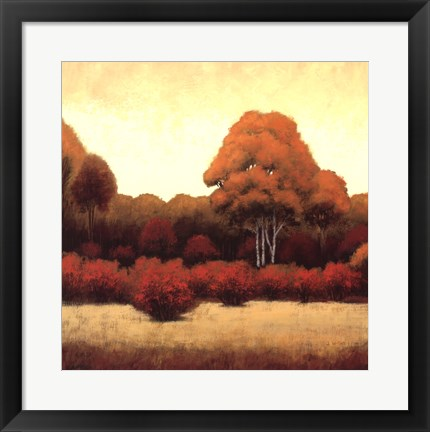 Framed Autumn Forest I Print