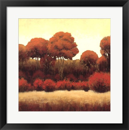 Framed Autumn Forest II Print