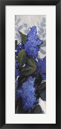 Framed Lilac Spray II Print