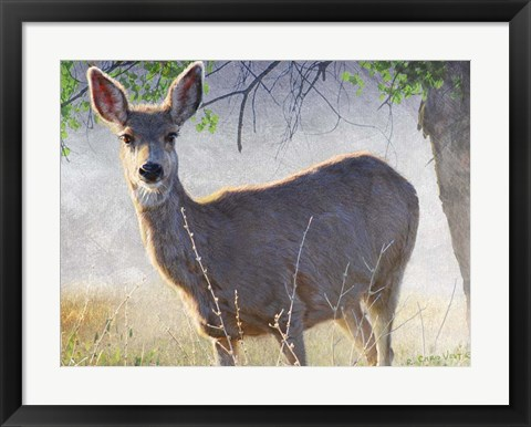 Framed Spring Doe Print