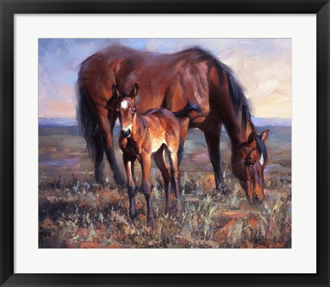 Framed Bay Filly Print