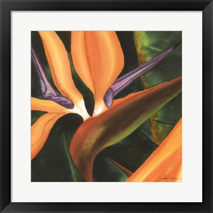 Framed Bird Of Paradise Tile IV Print