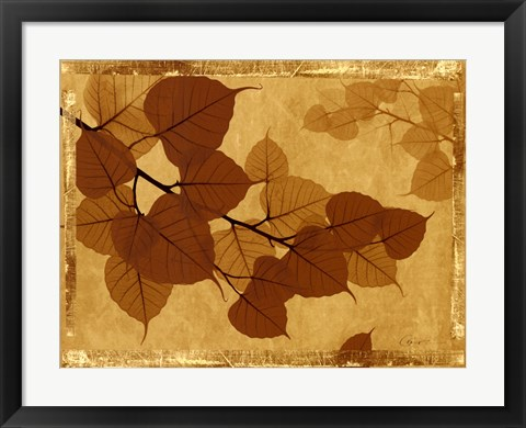 Framed Ghost Leaves I Print