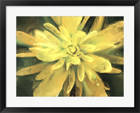 Framed Painterly Flower VII Print