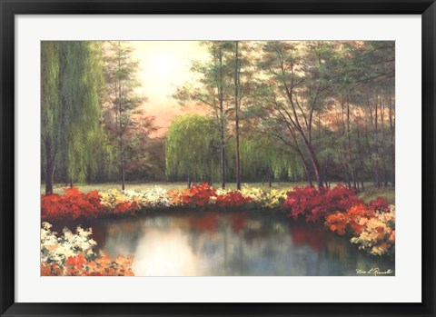 Framed Autumn Sunset Print