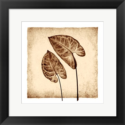 Framed Tropical Caladiums Print