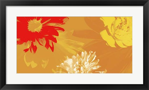 Framed Citrus Blooms II Print