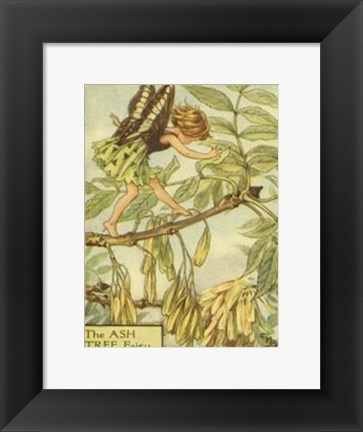 Framed Ash Tree Fairy Print