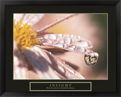 Framed Insight - Dewdrop Print