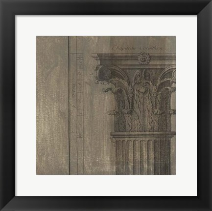 Framed Decorative Elegance VIII Print