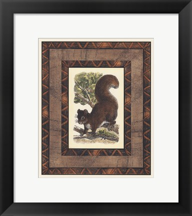 Framed Rustic Squirrel Print