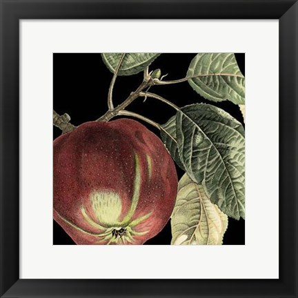 Framed Dramatic Apple Print