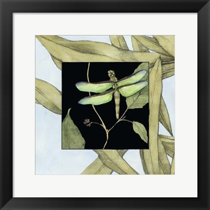Framed Dragonfly Inset III Print