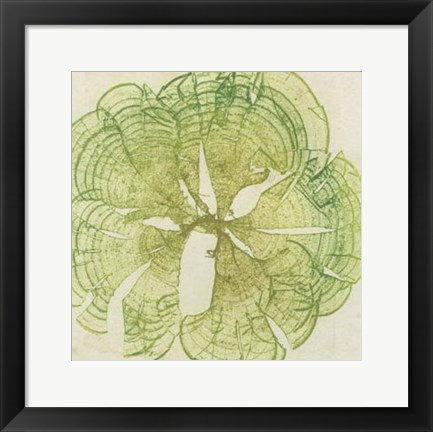 Framed Brilliant Seaweed VIII Print