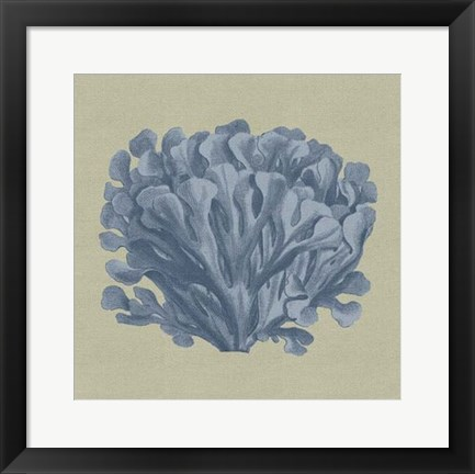 Framed Chambray Coral III Print