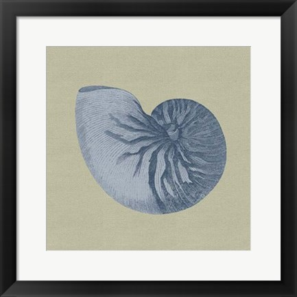 Framed Chambray Shells II Print