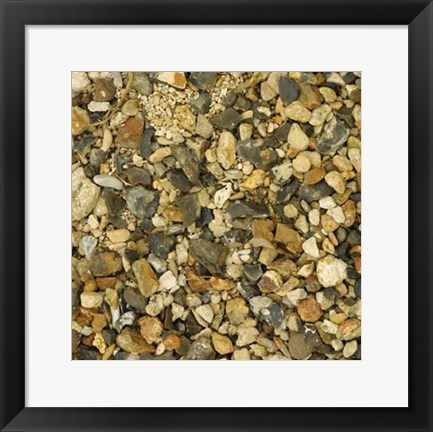 Framed Nature's Textures II Print