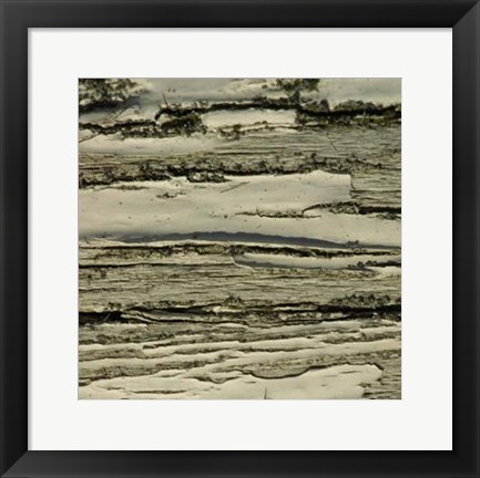 Framed Nature's Textures VIII Print