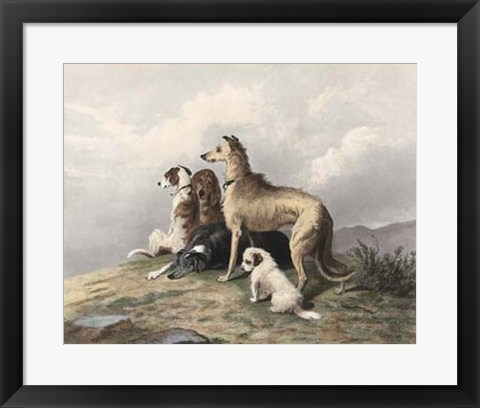 Framed Highland Dogs Print