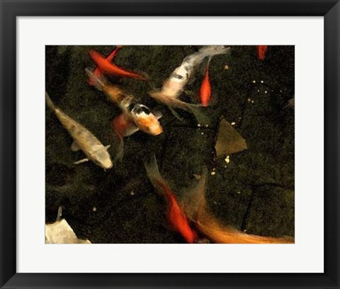 Framed Goldfish Pond II Print