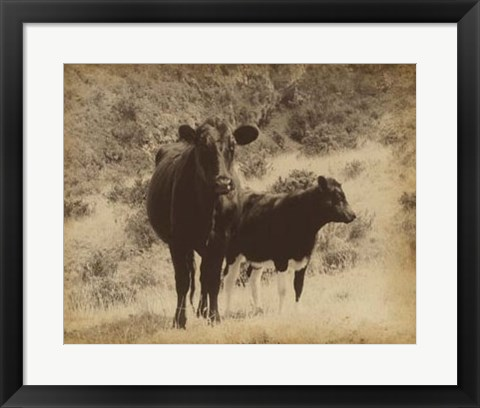 Framed Lone Star Cows I Print