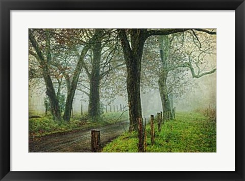 Framed Morning on Sparks Lane IV Print