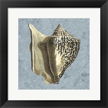 Framed Stonewashed Shells VI Print