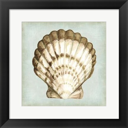 Framed Sea Dream Shells III Print