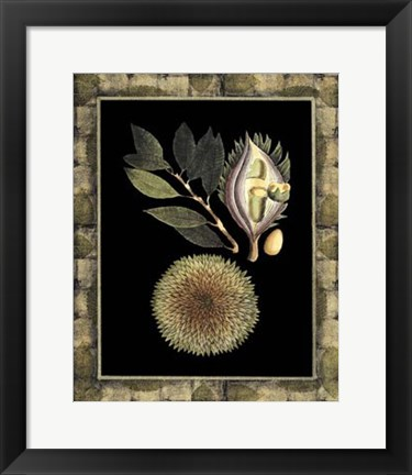 Framed Tropical Bounty III Print