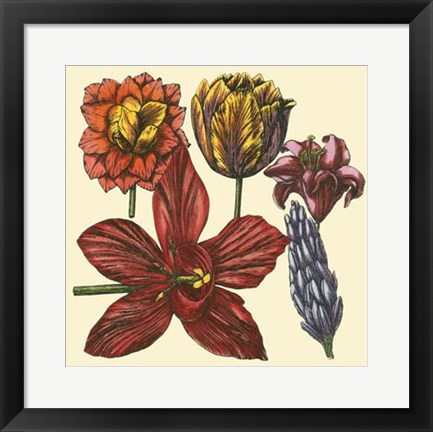 Framed Floral Spray VI Print