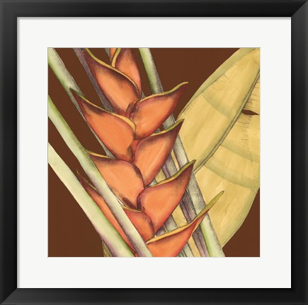 Framed Striking Tropical IV Print
