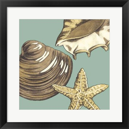 Framed Shell Trio on Blue IV Print