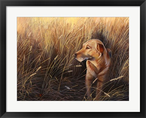Framed Golden Grass Print