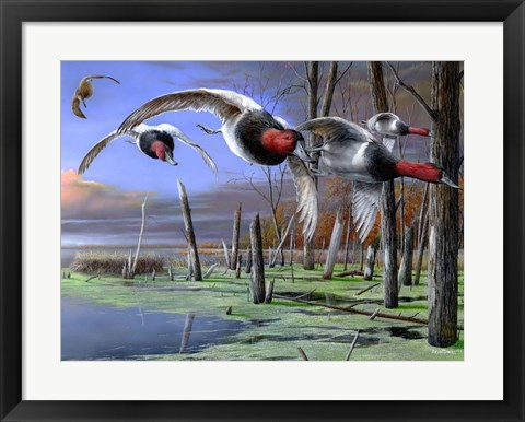 Framed Backwater Cans Print