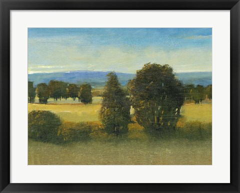 Framed Verdant Meadow I Print