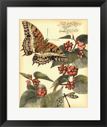 Framed Whimsical Butterflies II Print