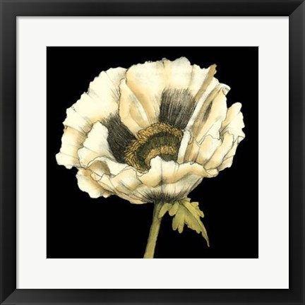 Framed Dramatic Poppy I Print