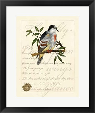 Framed Romantic Dove II Print
