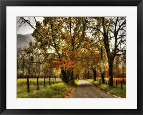 Framed Rainy Morning on Sparks Lane Print