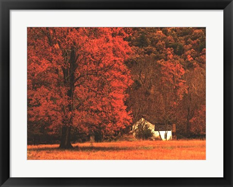 Framed Farm House on a Autumn Morn' Print