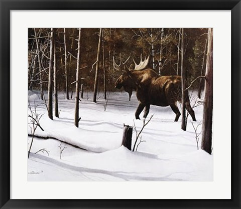 Framed Winter Forage Print
