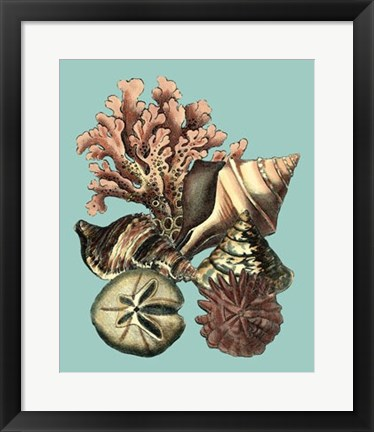 Framed Printed Shell & Coral Collection II Print